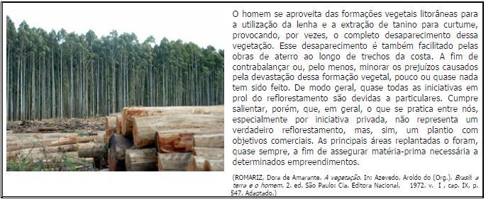 http://www.educandusweb.com.br/ewbco/portal/upload/xinha/romariz.JPG